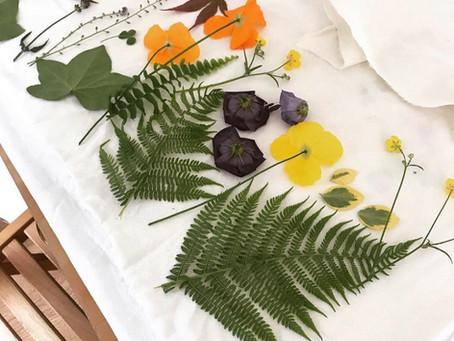 Hapa Zome - Japanese Flower Printing