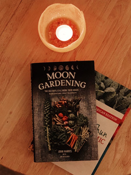 New year planning for the vegetable garden