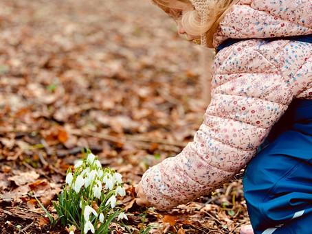 Spring awaken...