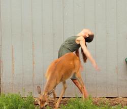 Dance with Deer