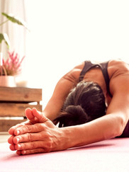 vinyasa williamsburg new york affordable fitness online yogini class