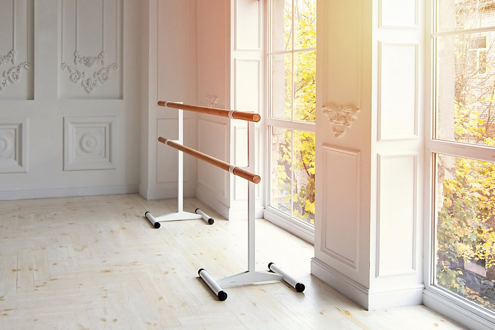 Mobile ballet machine for classes in the hall with sunshine.jpg