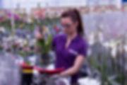 Уникальная система заказа растений