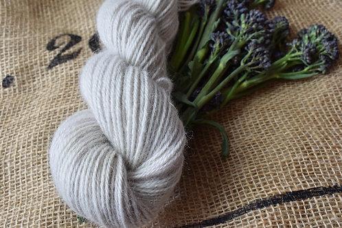 Hand dyed Masham Dk 100g - Purple Sprouting