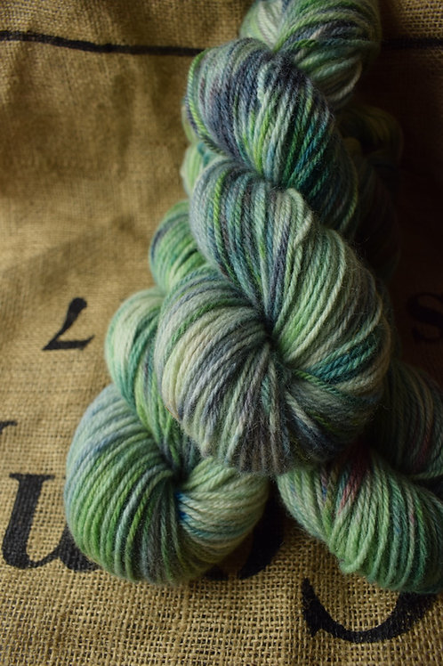 'Treasure' Hand dyed Dartmoor Merino Dk 100g