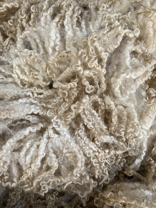 Raw Masham Shearling Fleece - 1.6kg