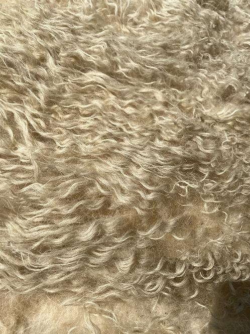 Felted Dalesbred fleece. 2.3kg