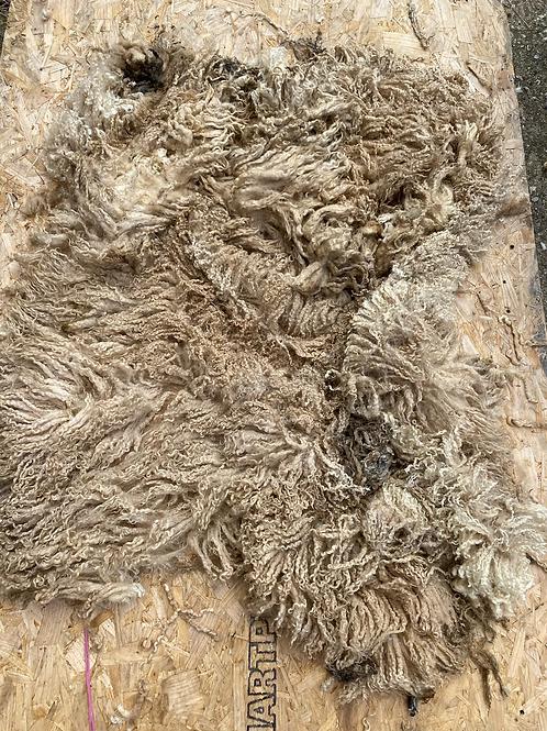 Raw Masham Shearling Fleece - 1.9kg