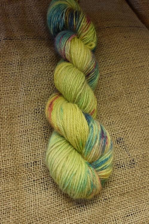 Hand dyed Masham Dk 100g - 'Frutti'