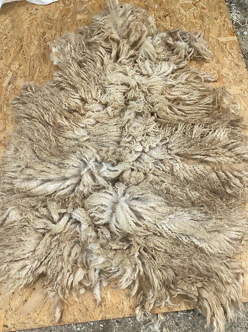 Raw Herdwick Mule Ewe Fleece - 1.7kg