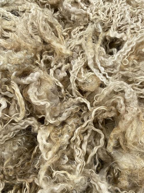 Raw Teeswater Fleece - 600g
