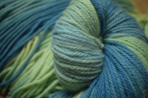 Hand dyed Yarn - WaterMeadow100g DK Medium 3fold12ysw
