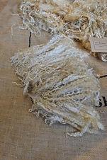1.2kg Teeswater Fleece