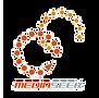 MediaSeek_image_2020-10-29_12-36-06.png