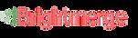 Brightmerge_Logo.webp