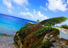 Barbados image.jpg