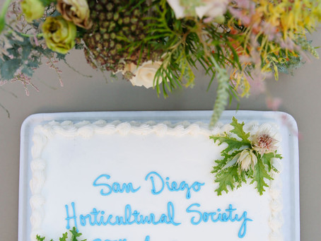 SDHS 25th ANNIVERSARY RECEPTION: A Few Scenes from the Celebration