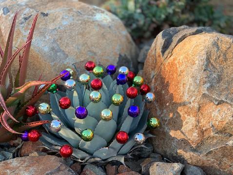 SHARING SECRETS: Decorate Your Garden For December?