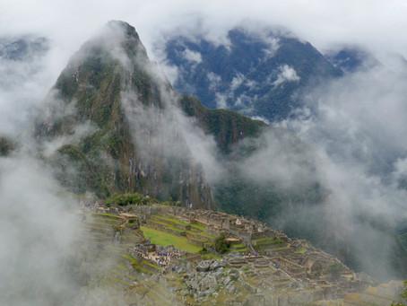 MY LIFE WITH PLANTS:  Machu Picchu