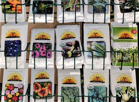 MEETING REPORT: The Magical World of Seeds.