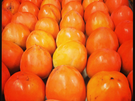 EDITOR'S LETTER: Persimmons Anyone?