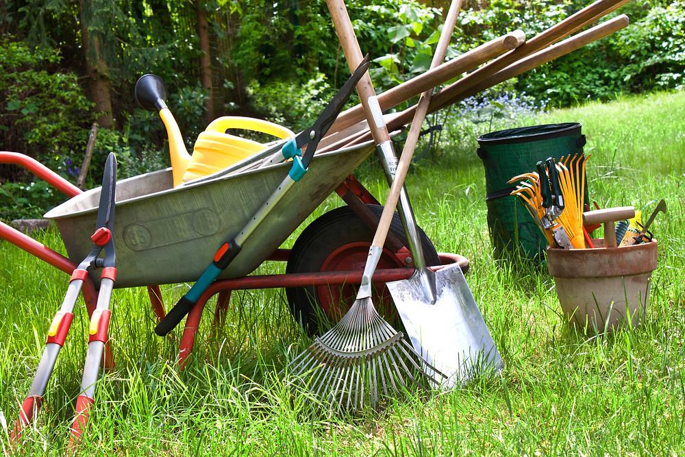 Istock photo courtesy MGA.