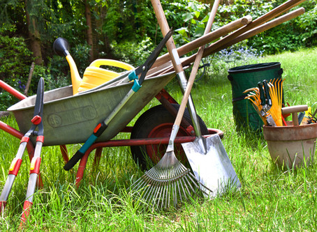 FROM THE MASTER GARDENERS: Get Garden Tools in Shape!