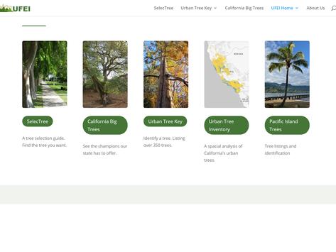 TREES, PLEASE! Cal-Polytechnic University Urban Tree's Website