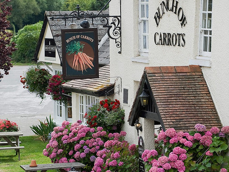 DID YOU KNOW? There Is A World Carrot Museum!