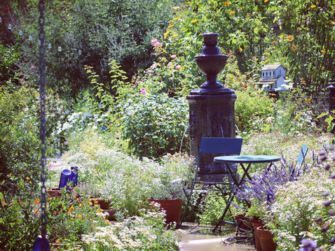EDITOR'S LETTER: Gardening Boom Comes From COVID-19