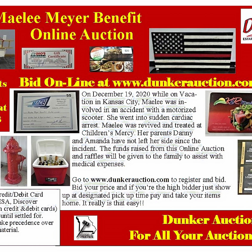 Maelee Meyer Benefit Online Auction