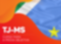 tj-ms-objetiva_banner-site.png