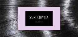 Saint Chevuex Website Preview.png