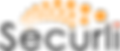 Securli logo-color72.png