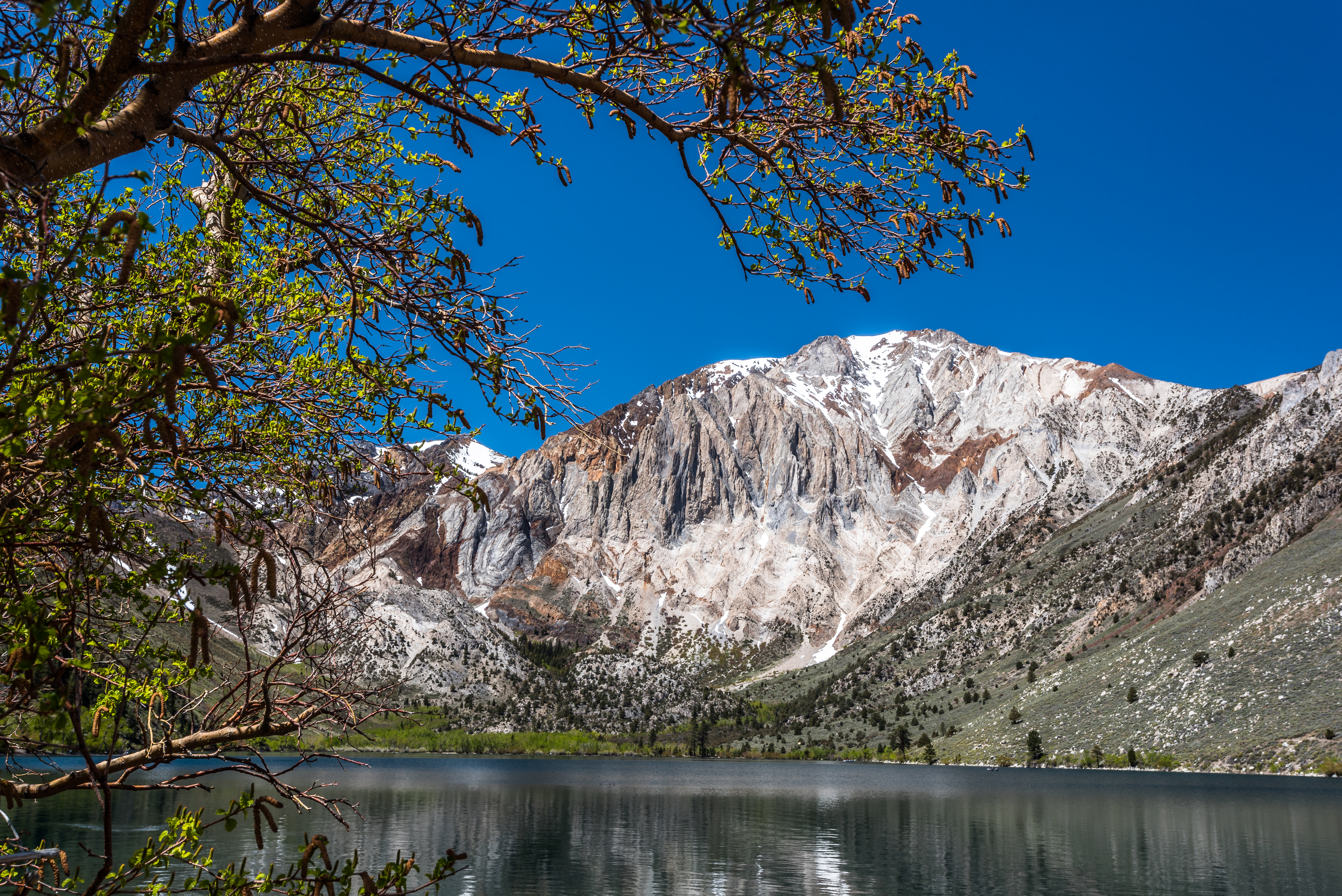 Laurel Mountain Convict Lake