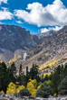 Eastern Sierra Fall Colors