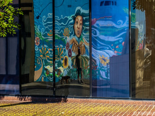 Colorful Mural and Man Walking Dog Reflected In Office Windows