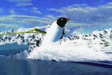 bluebird ski s