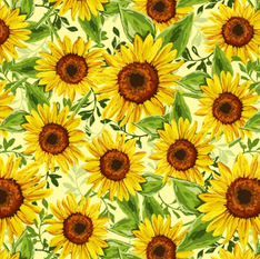 Sunflowers .png