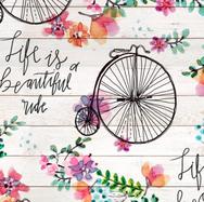 Beautiful Ride .png
