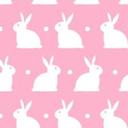 Bedtime Bunny Pimk.png
