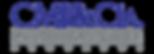 Logo CMI abogados