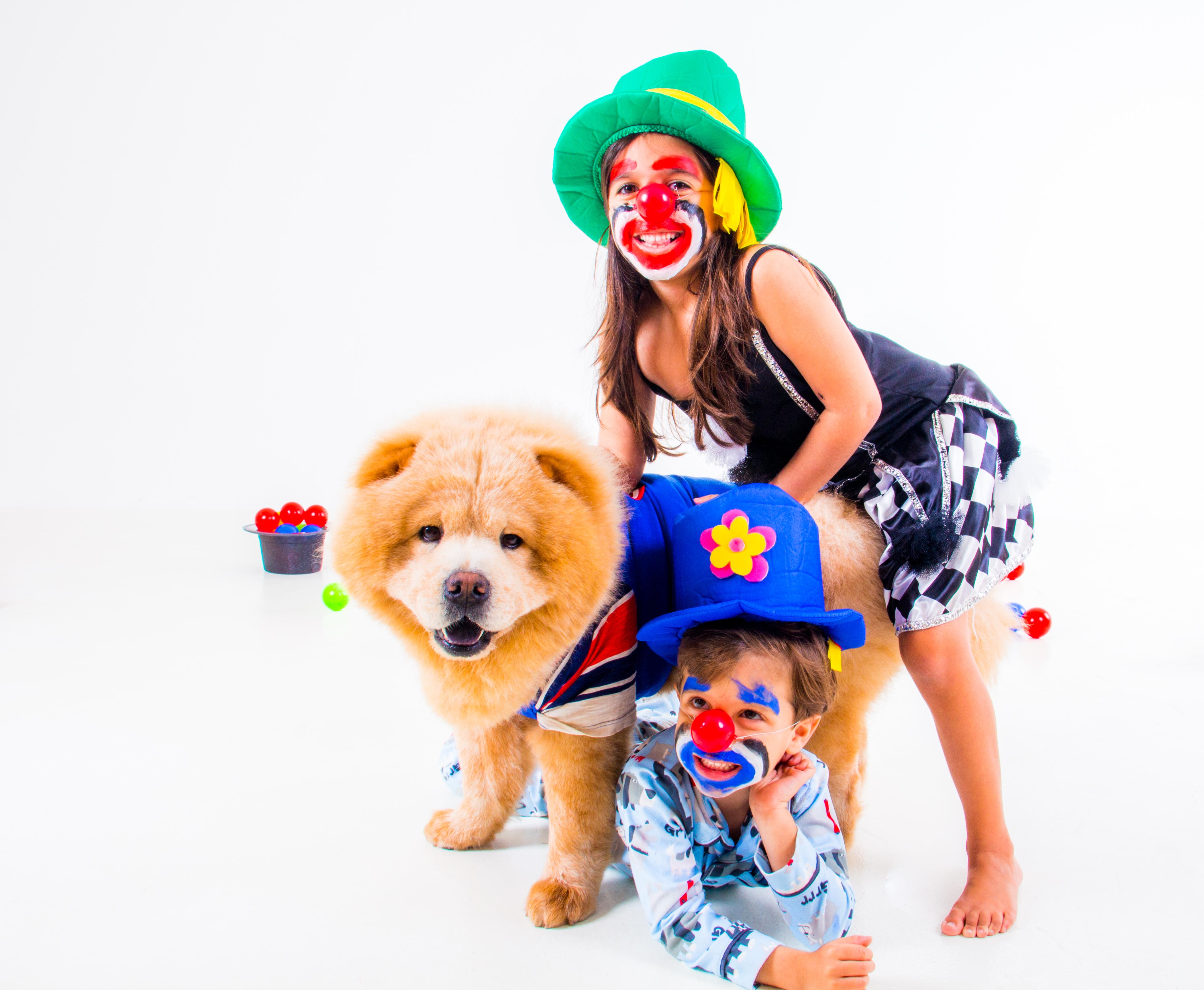 Ensaio Pet e Família em Recife chow