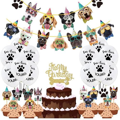 Rental Birthday Party Decoration