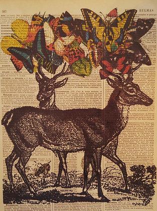 Double Deers