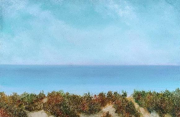 A Beach Paths