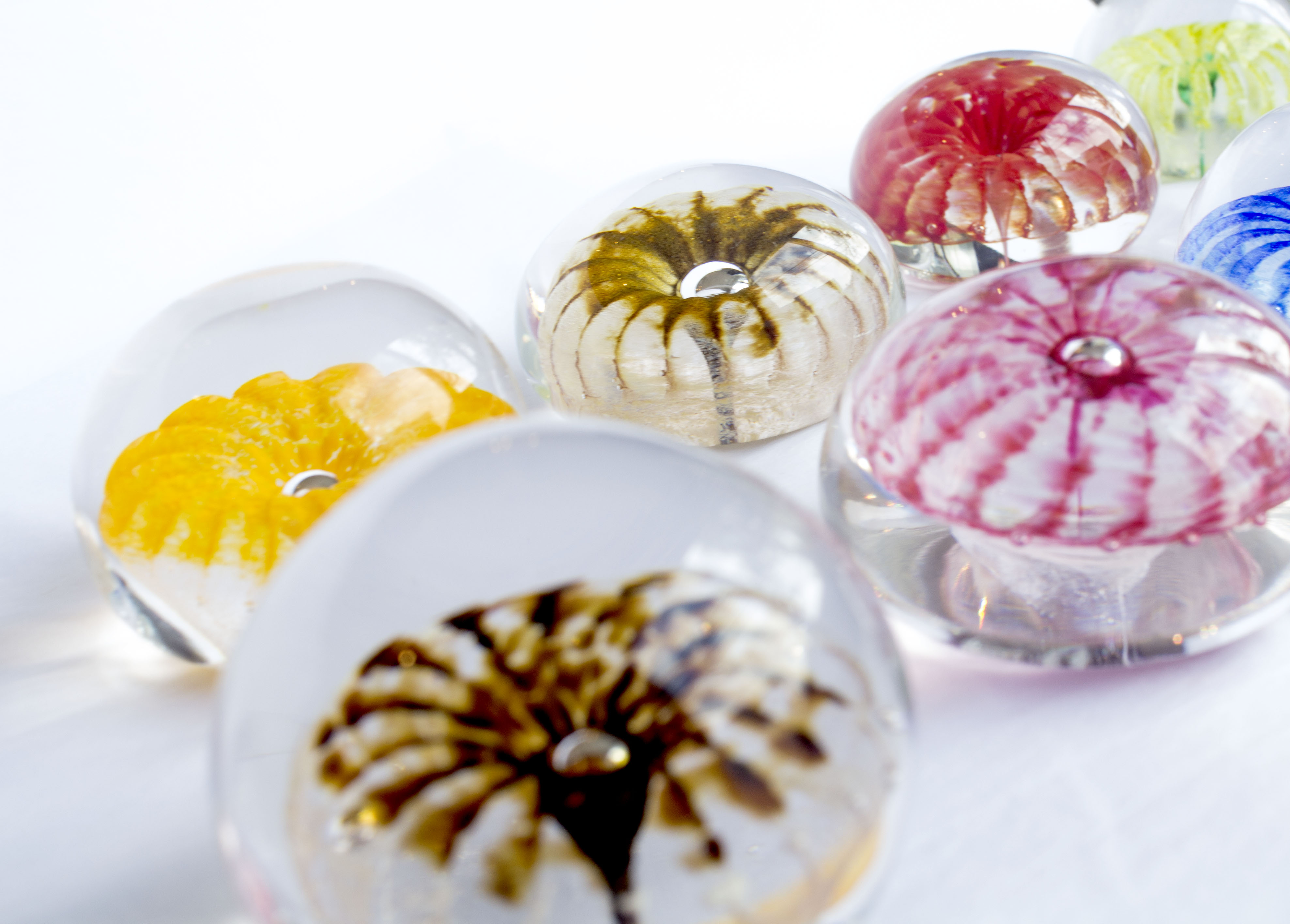 paperweights5