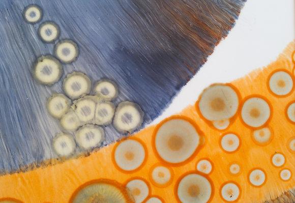 Orange Eyes II