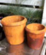 rusted rim planter.JPG