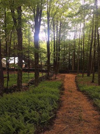 Hemlock Falls Camping